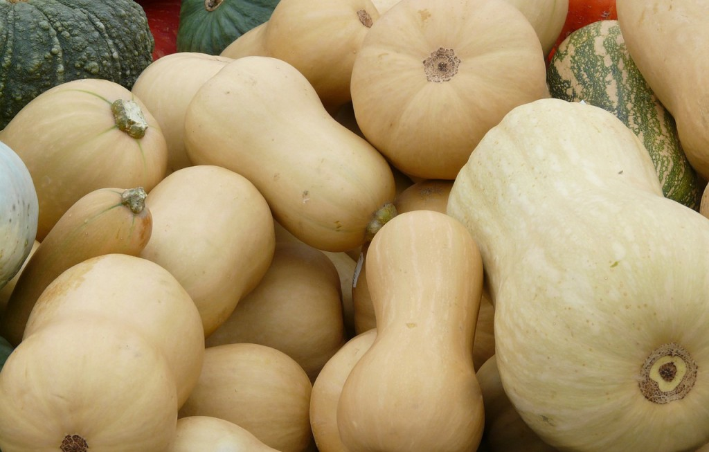 winter squash butternut